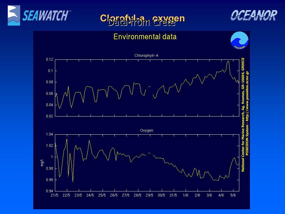Clorofyl-a,, oxygen Data from Crete