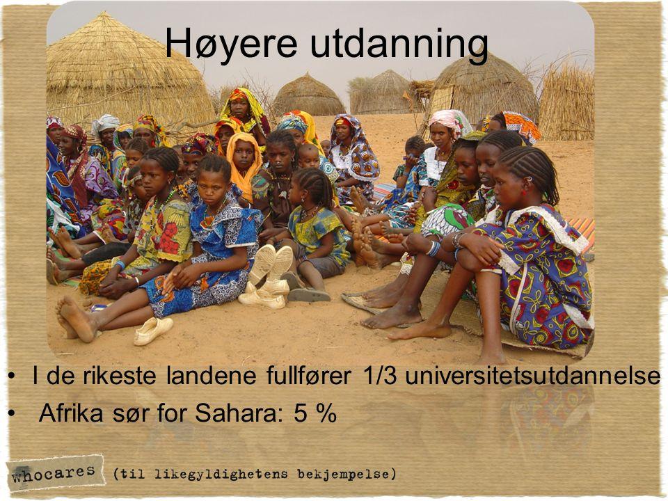 Høyere utdanning I de rikeste landene fullfører 1/3 universitetsutdannelse Afrika sør for Sahara: 5 %
