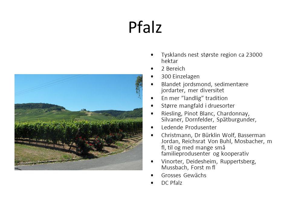 "Pfalz Tysklands nest største region ca 23000 hektar 2 Bereich 300 Einzelagen Blandet jordsmond, sedimentære jordarter, mer diversitet En mer ""landlig"""