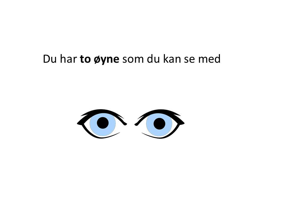 Du har to øyne som du kan se med