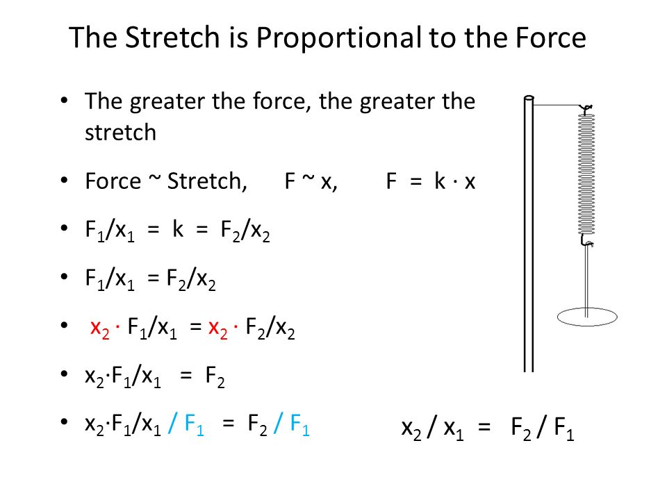 The greater the force, the greater the stretch Force ~ Stretch, F ~ x, F = k ∙ x F 1 /x 1 = k = F 2 /x 2 F 1 /x 1 = F 2 /x 2 x 2 ∙ F 1 /x 1 = x 2 ∙ F