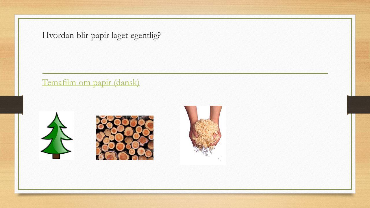 Hvordan blir papir laget egentlig Temafilm om papir (dansk)