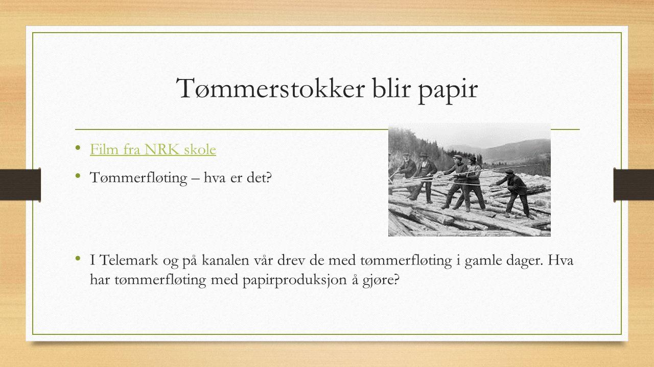 Tømmerstokker blir papir Film fra NRK skole Tømmerfløting – hva er det? I Telemark og på kanalen vår drev de med tømmerfløting i gamle dager. Hva har