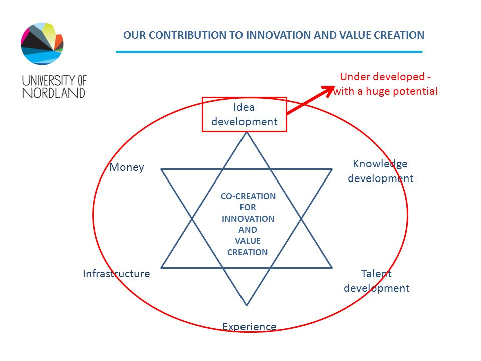 Idea development Talent development Experience Infrastructure Money Knowledge development CO-CREATION FOR INNOVATION AND VALUE CREATION OUR CONTRIBUTION TO INNOVATION AND VALUE CREATION Under developed - with a huge potential