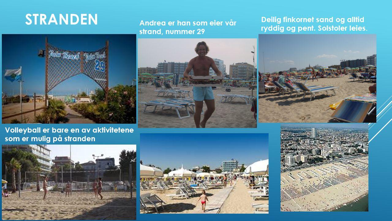 STRANDEN Andrea er han som eier vår strand, nummer 29 Deilig finkornet sand og alltid ryddig og pent.