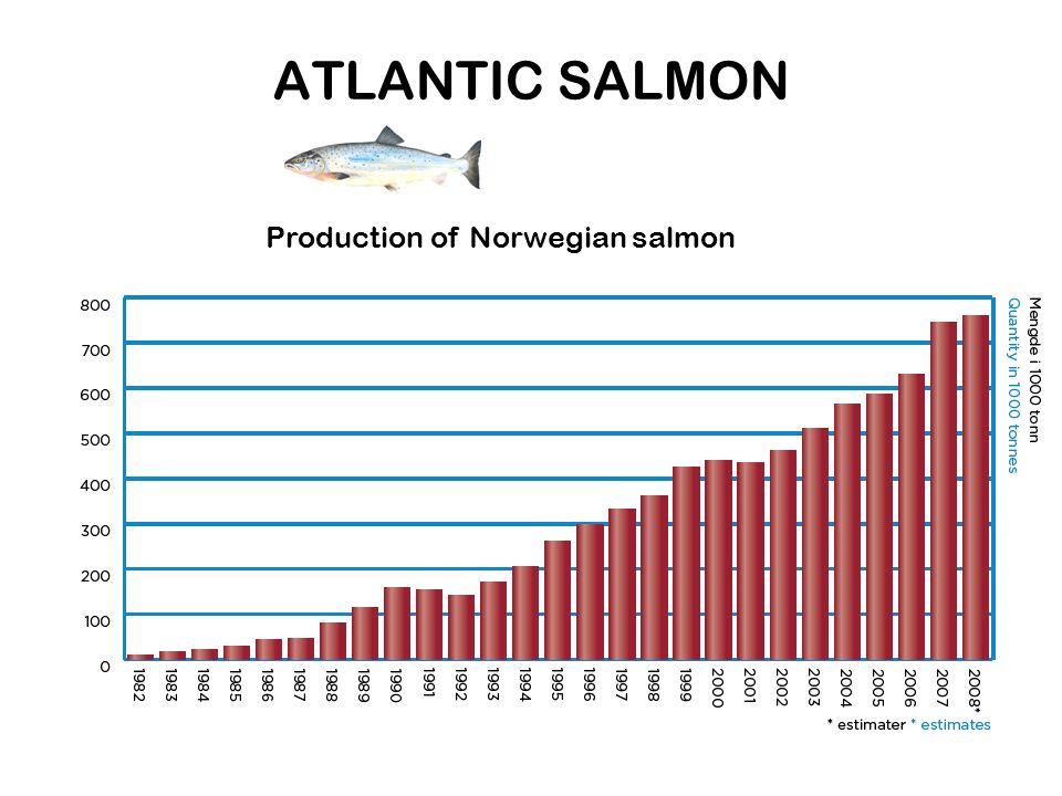 ATLANTIC SALMON Production of Norwegian salmon