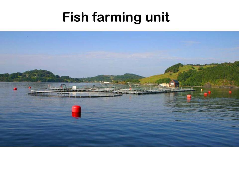Fish farming unit
