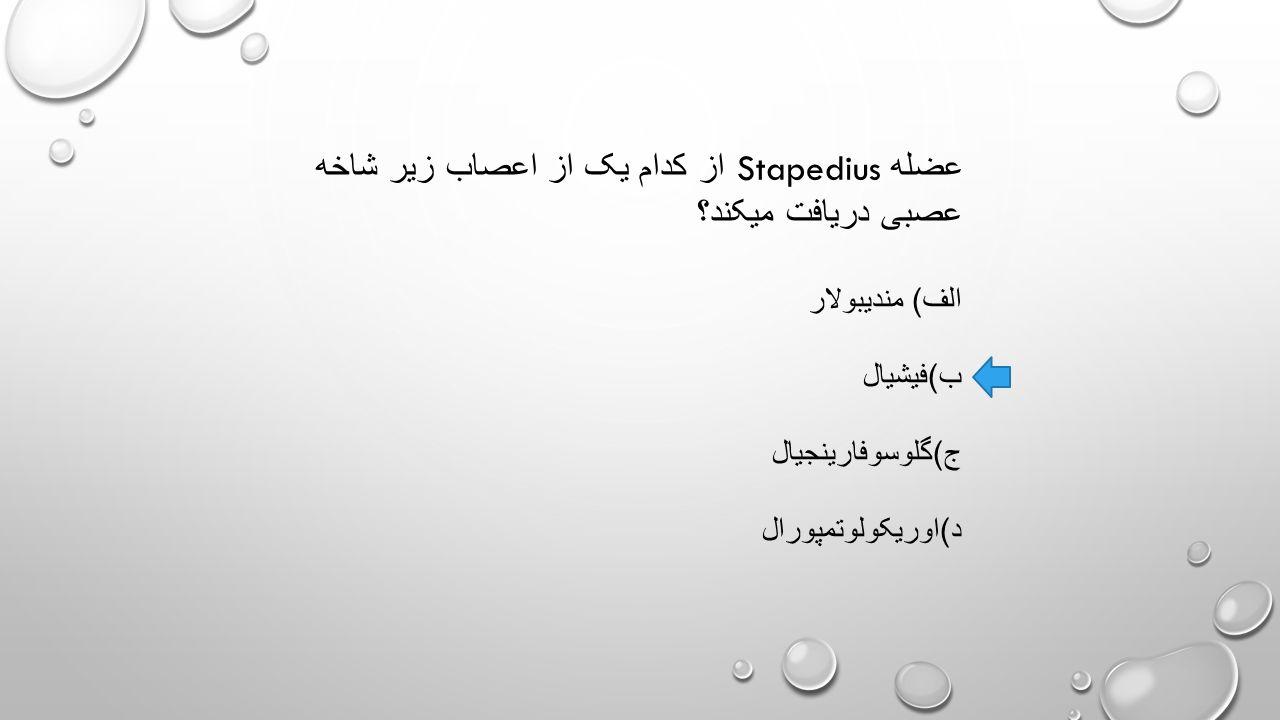 عضله Stapedius از کدام یک از اعصاب زیر شاخه عصبی دریافت میکند؟ الف ) مندیبولار ب ) فیشیال ج ) گلوسوفارینجیال د ) اوریکولوتمپورال