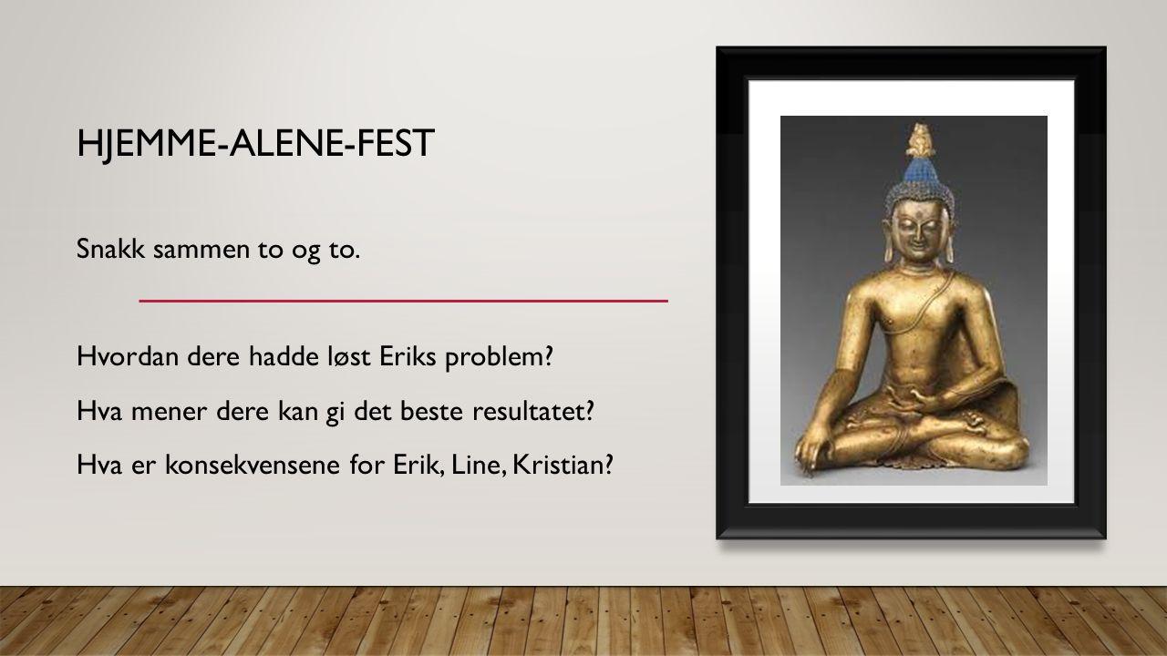 HJEMME-ALENE-FEST Snakk sammen to og to. Hvordan dere hadde løst Eriks problem.