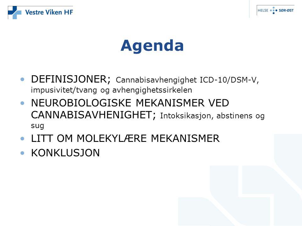 Agenda DEFINISJONER; Cannabisavhengighet ICD-10/DSM-V, impusivitet/tvang og avhengighetssirkelen NEUROBIOLOGISKE MEKANISMER VED CANNABISAVHENIGHET; Intoksikasjon, abstinens og sug LITT OM MOLEKYLÆRE MEKANISMER KONKLUSJON