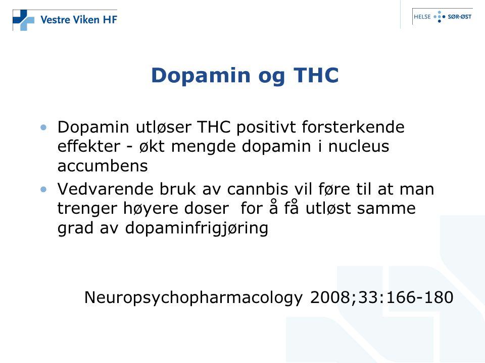 Dopamin og THC Dopamin utløser THC positivt forsterkende effekter - økt mengde dopamin i nucleus accumbens Vedvarende bruk av cannbis vil føre til at man trenger høyere doser for å få utløst samme grad av dopaminfrigjøring Neuropsychopharmacology 2008;33:166-180