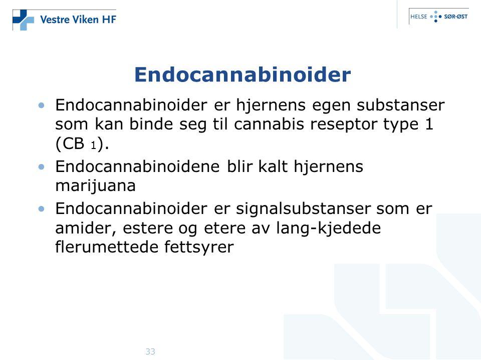 33 Endocannabinoider Endocannabinoider er hjernens egen substanser som kan binde seg til cannabis reseptor type 1 (CB 1 ).