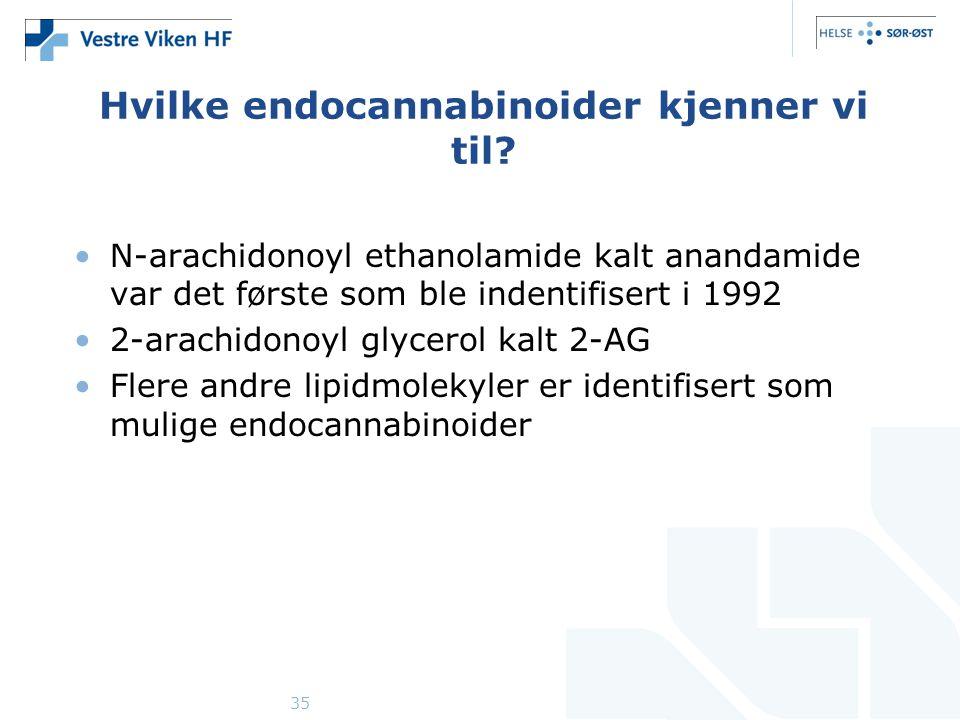 35 Hvilke endocannabinoider kjenner vi til.