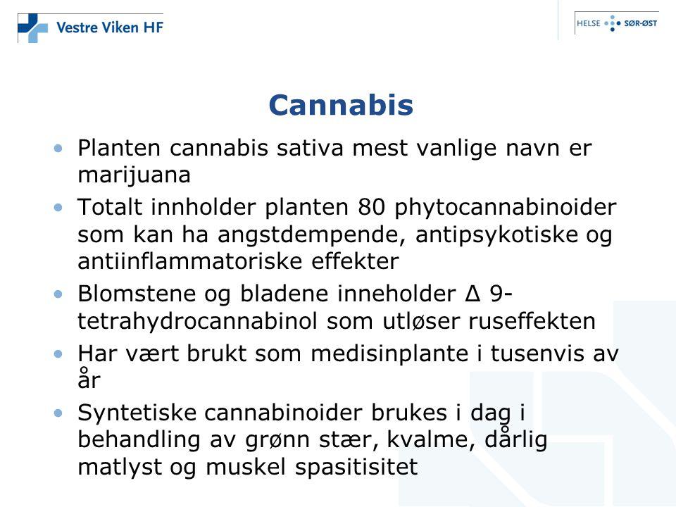 Cannabis Planten cannabis sativa mest vanlige navn er marijuana Totalt innholder planten 80 phytocannabinoider som kan ha angstdempende, antipsykotiske og antiinflammatoriske effekter Blomstene og bladene inneholder ∆ 9- tetrahydrocannabinol som utløser ruseffekten Har vært brukt som medisinplante i tusenvis av år Syntetiske cannabinoider brukes i dag i behandling av grønn stær, kvalme, dårlig matlyst og muskel spasitisitet