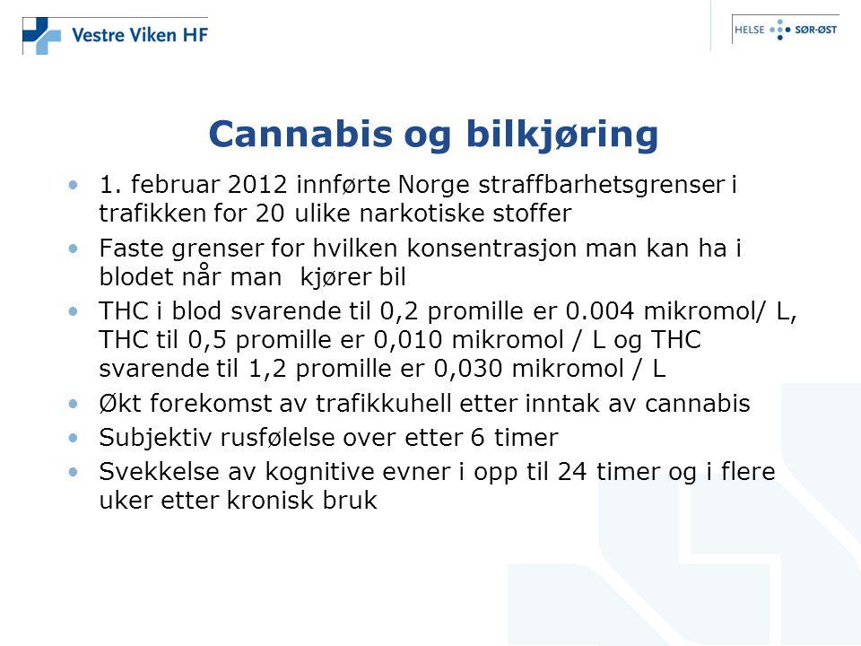 Cannabis og bilkjøring 1.