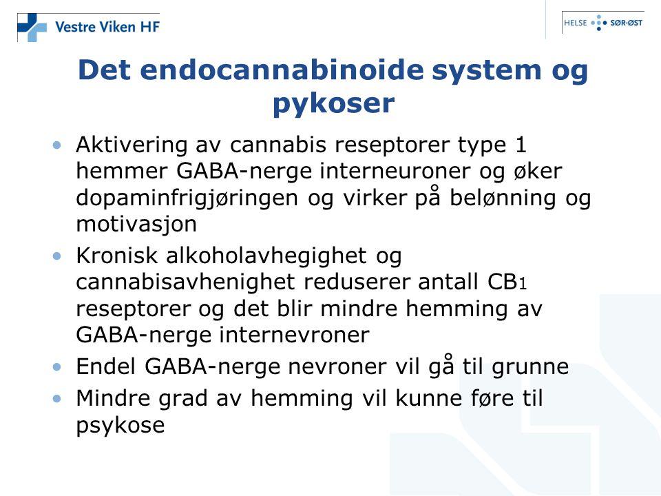 Det endocannabinoide system og pykoser Aktivering av cannabis reseptorer type 1 hemmer GABA-nerge interneuroner og øker dopaminfrigjøringen og virker på belønning og motivasjon Kronisk alkoholavhegighet og cannabisavhenighet reduserer antall CB 1 reseptorer og det blir mindre hemming av GABA-nerge internevroner Endel GABA-nerge nevroner vil gå til grunne Mindre grad av hemming vil kunne føre til psykose