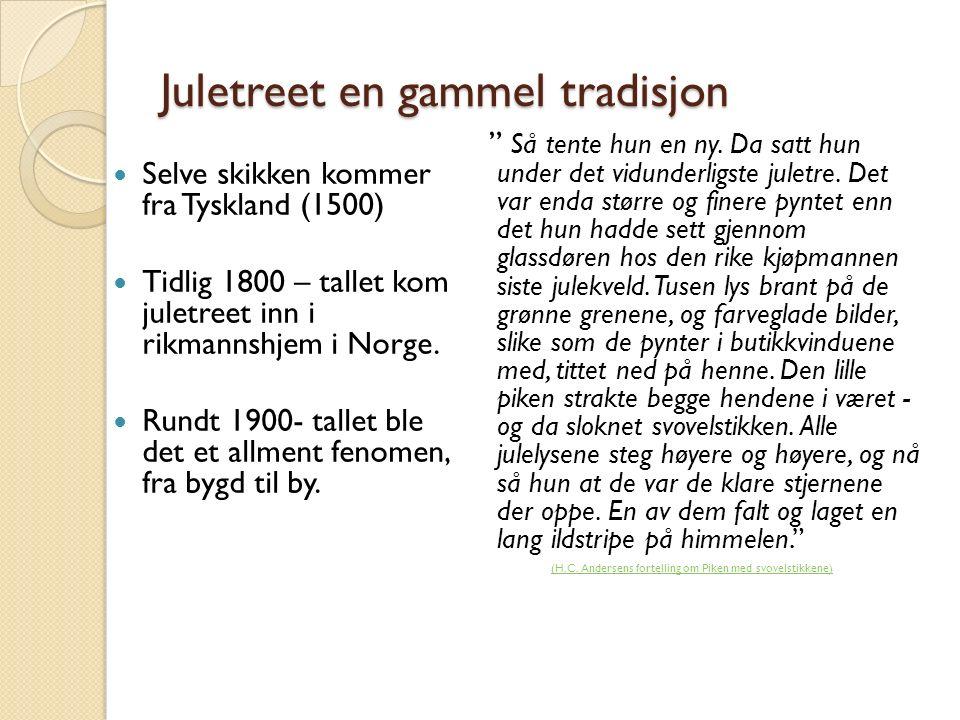 Juletreet en gammel tradisjon Selve skikken kommer fra Tyskland (1500) Tidlig 1800 – tallet kom juletreet inn i rikmannshjem i Norge. Rundt 1900- tall