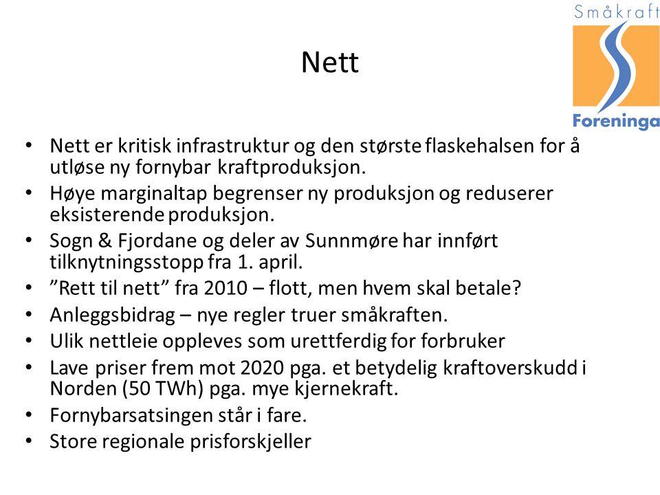 Nett Nett er kritisk infrastruktur og den største flaskehalsen for å utløse ny fornybar kraftproduksjon.
