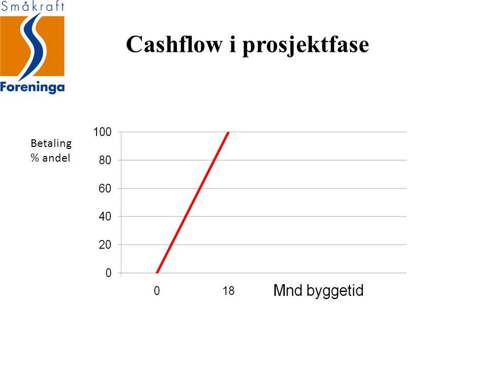 Cashflow i prosjektfase Betaling % andel