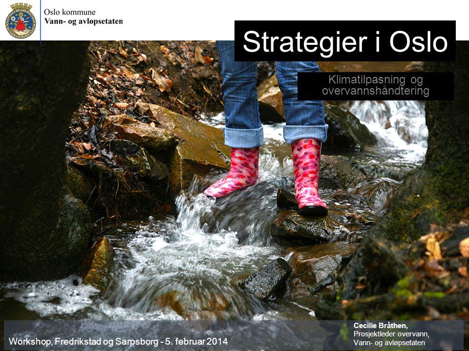 Strategier i Oslo Klimatilpasning og overvannshåndtering Workshop, Fredrikstad og Sarpsborg - 5.