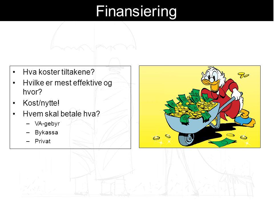 Finansiering Hva koster tiltakene.Hvilke er mest effektive og hvor.