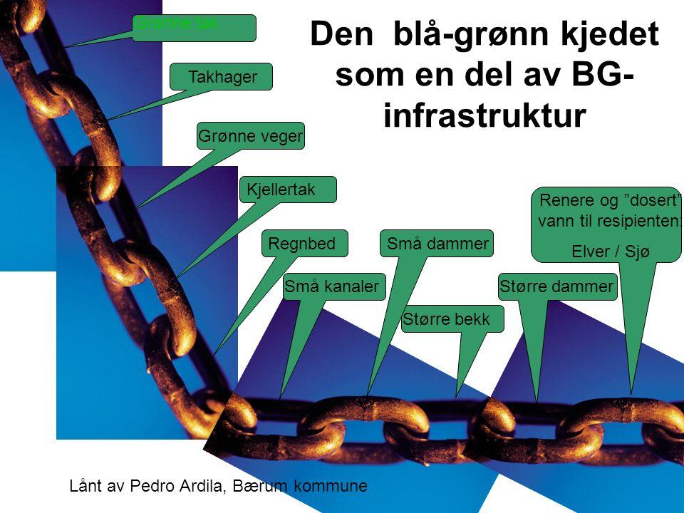 Den blå-grønn kjedet som en del av BG- infrastruktur Grønne tak Takhager Kjellertak Små kanaler Regnbed Større bekk Større dammer Små dammer Renere og dosert vann til resipienten: Elver / Sjø Grønne veger Lånt av Pedro Ardila, Bærum kommune
