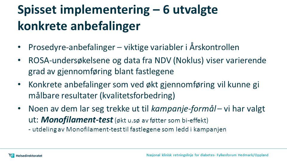 Spisset implementering – 6 utvalgte konkrete anbefalinger Prosedyre-anbefalinger – viktige variabler i Årskontrollen ROSA-undersøkelsene og data fra NDV (Noklus) viser varierende grad av gjennomføring blant fastlegene Konkrete anbefalinger som ved økt gjennomføring vil kunne gi målbare resultater (kvalitetsforbedring) Noen av dem lar seg trekke ut til kampanje-formål – vi har valgt ut: Monofilament-test (økt u.sø av føtter som bi-effekt) - utdeling av Monofilament-test til fastlegene som ledd i kampanjen Nasjonal klinisk retningslinje for diabetes- Fylkesforum Hedmark/Oppland