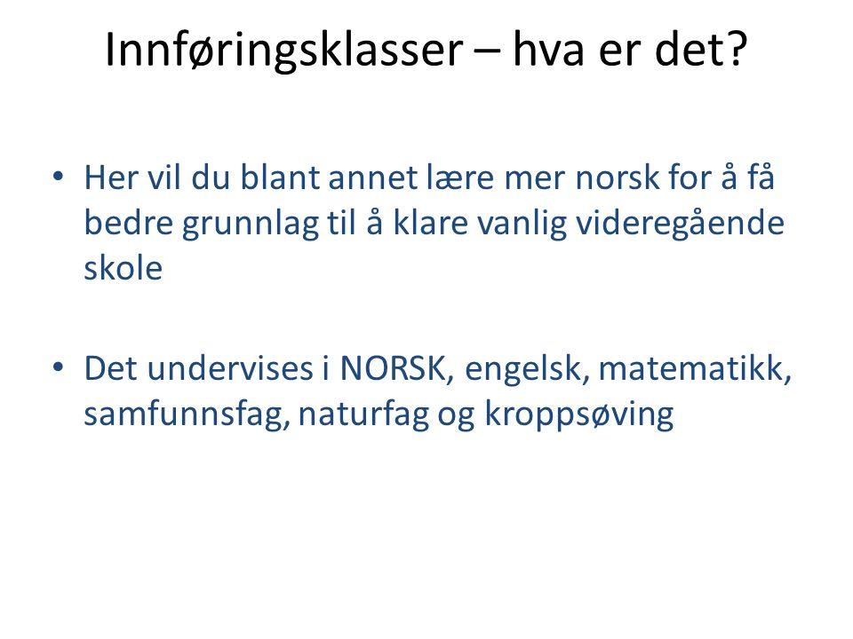 Innføringsklasser – hva er det? Her vil du blant annet lære mer norsk for å få bedre grunnlag til å klare vanlig videregående skole Det undervises i N