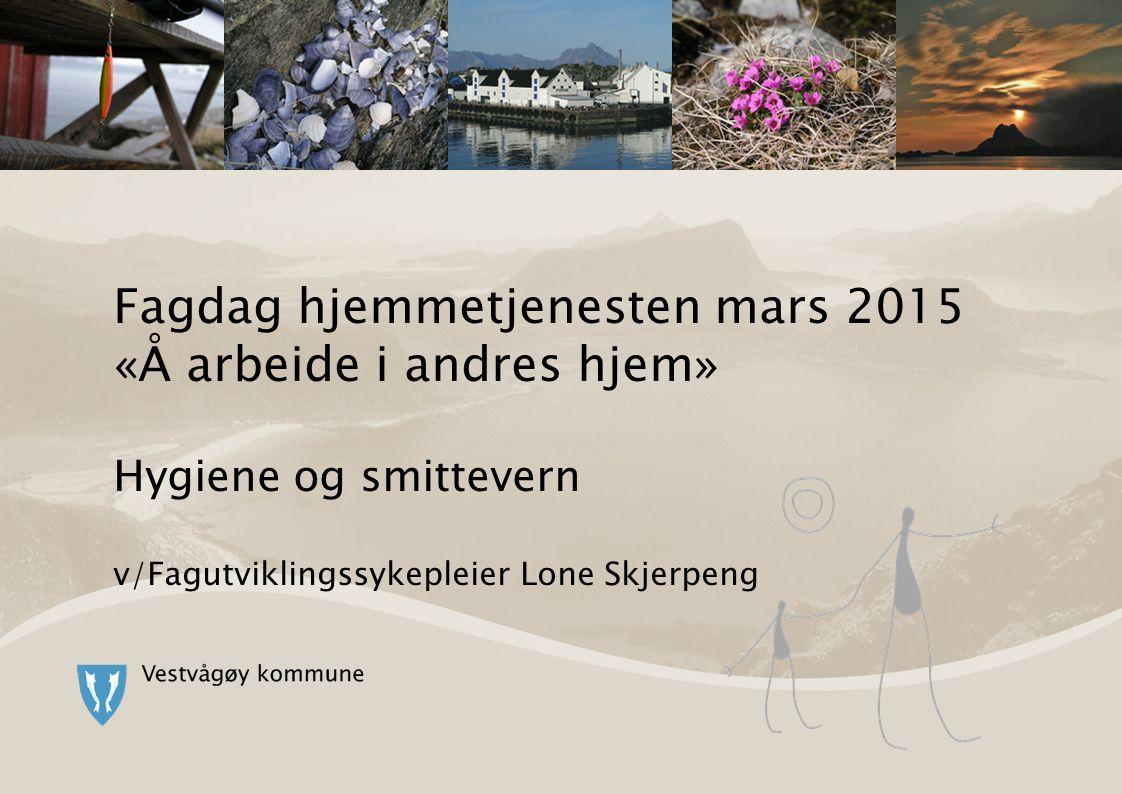 Fagdag hjemmetjenesten mars 2015 «Å arbeide i andres hjem» Hygiene og smittevern v/Fagutviklingssykepleier Lone Skjerpeng