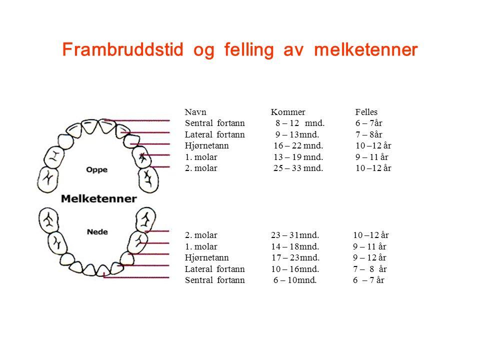 Frambruddstid og felling av melketenner Navn Kommer Felles Sentral fortann 8 – 12mnd.