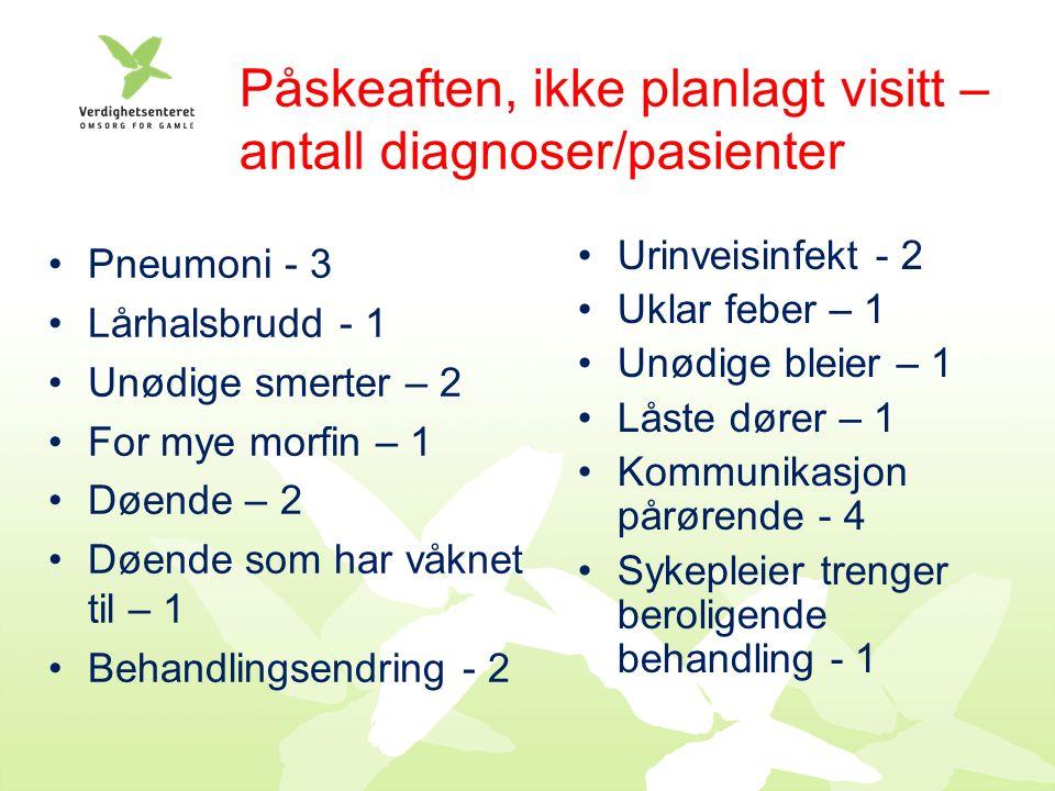 Påskeaften, ikke planlagt visitt – antall diagnoser/pasienter Pneumoni - 3 Lårhalsbrudd - 1 Unødige smerter – 2 For mye morfin – 1 Døende – 2 Døende som har våknet til – 1 Behandlingsendring - 2 Urinveisinfekt - 2 Uklar feber – 1 Unødige bleier – 1 Låste dører – 1 Kommunikasjon pårørende - 4 Sykepleier trenger beroligende behandling - 1