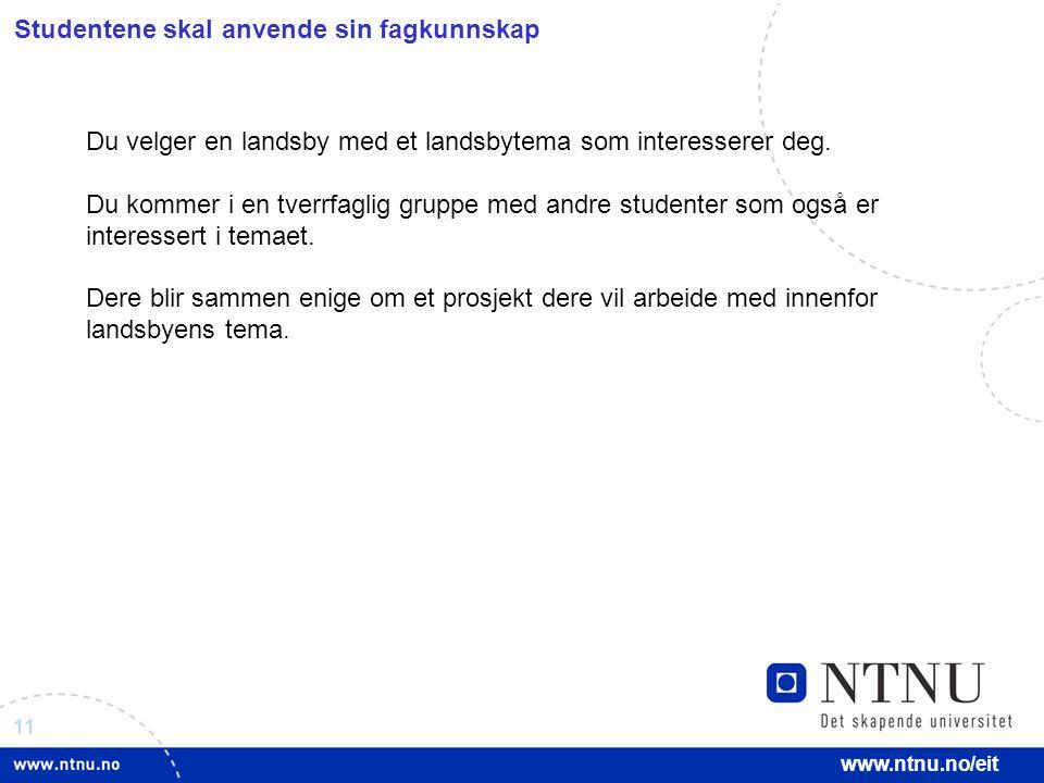 11 www.ntnu.no/eit Studentene skal anvende sin fagkunnskap Du velger en landsby med et landsbytema som interesserer deg.