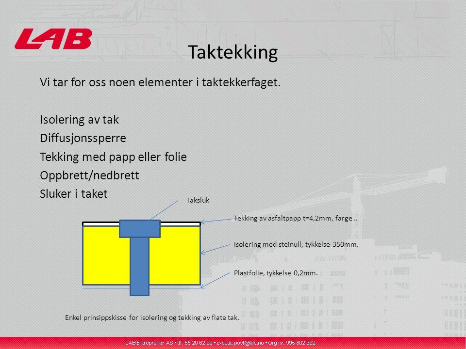 Taktekking Vi tar for oss noen elementer i taktekkerfaget.