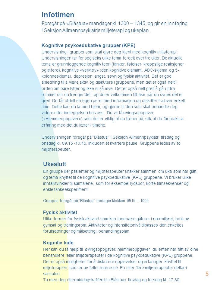 5 Ukeslutt En gruppe der pasienter og miljøterapeuter snakker sammen om uka som har gått, og tema knyttet til de kognitive psykoedukative (KPE) gruppene.