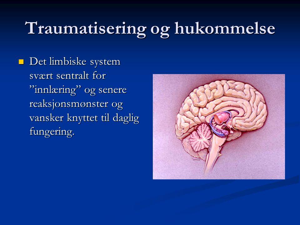 Dissosiative symptomer Psykoform Somatoform Negative symptomer bl.a. Negative symptomer bl.a. Amnesi Amnesi Emosjonell nummenhet Emosjonell nummenhet