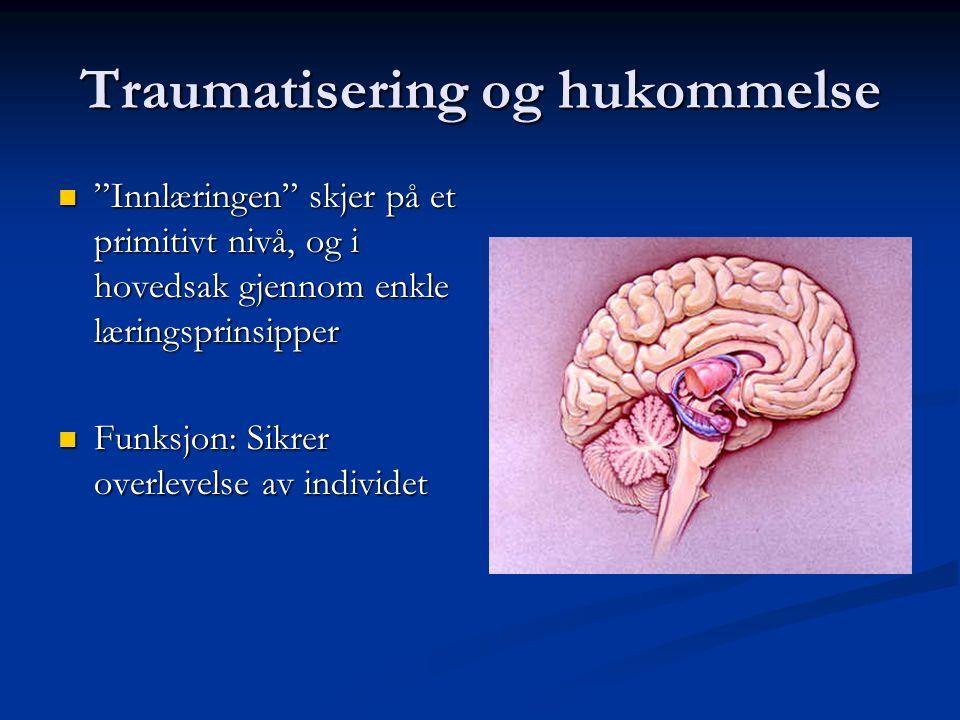 """Traumatisering og hukommelse Det limbiske system svært sentralt for """"innlæring"""" og senere reaksjonsmønster og vansker knyttet til daglig fungering. De"""