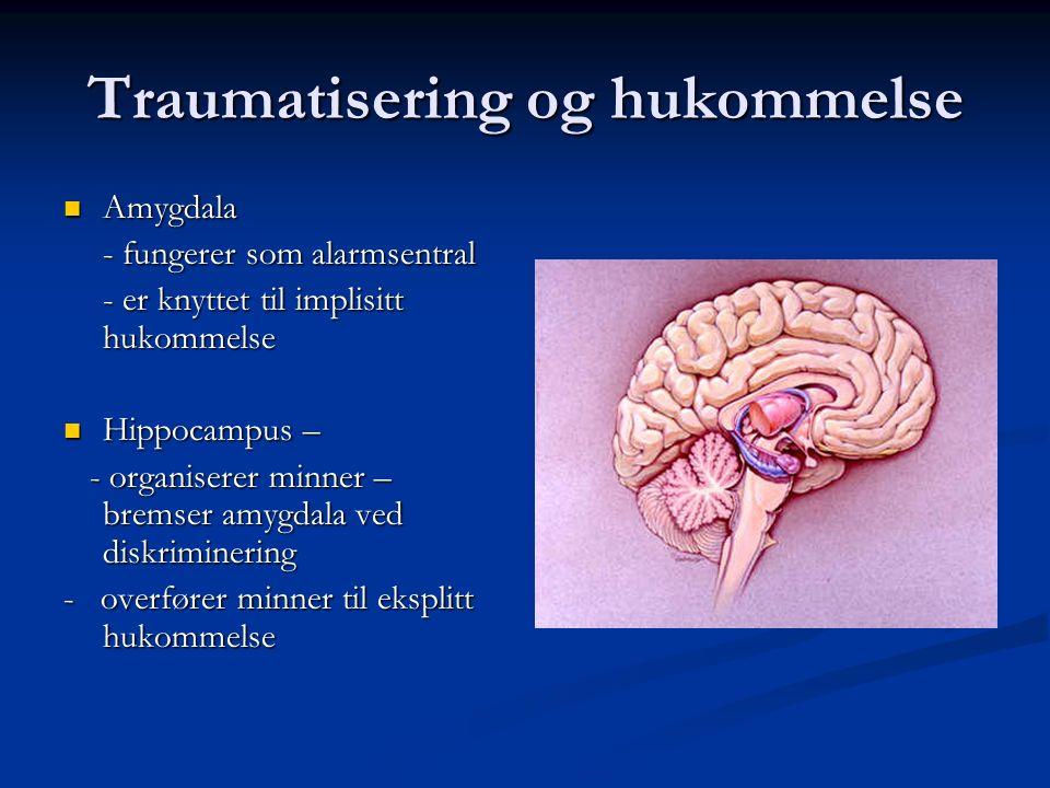 """Traumatisering og hukommelse """"Innlæringen"""" skjer på et primitivt nivå, og i hovedsak gjennom enkle læringsprinsipper """"Innlæringen"""" skjer på et primiti"""