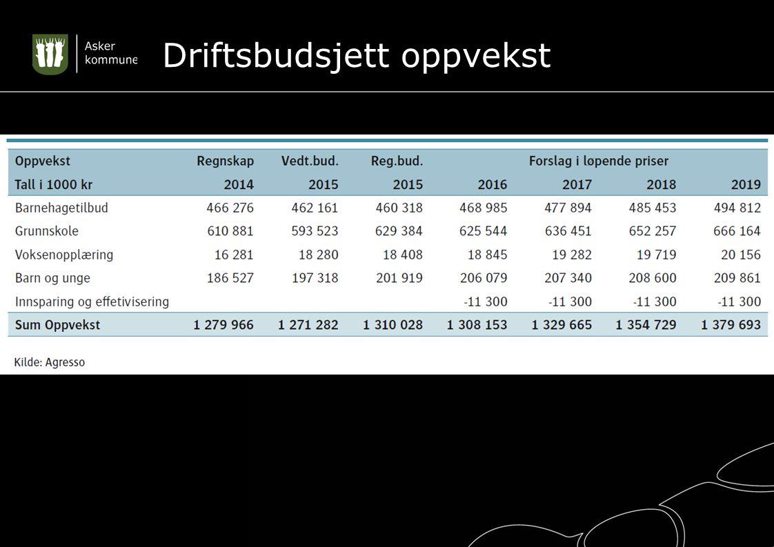 Driftsbudsjett oppvekst