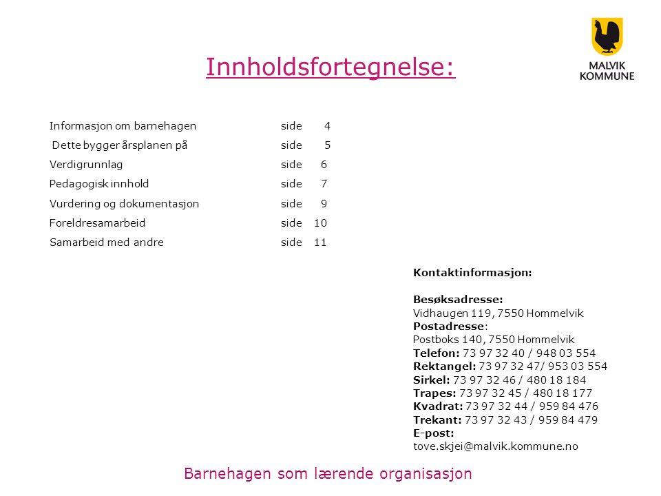 Vidhaugen barnehage er en av Malvik sine 9 kommunale barnehager.