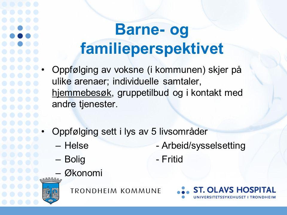 Barne- og familieperspektivet Oppfølging av voksne (i kommunen) skjer på ulike arenaer; individuelle samtaler, hjemmebesøk, gruppetilbud og i kontakt med andre tjenester.