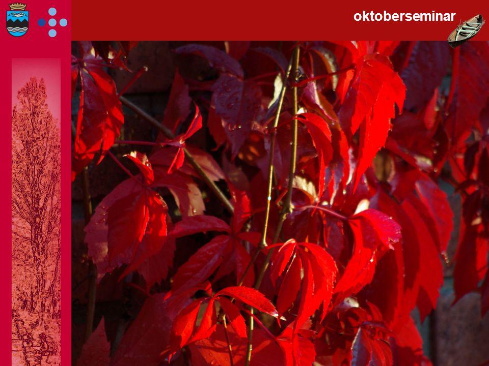 Beinstrekk! oktoberseminar