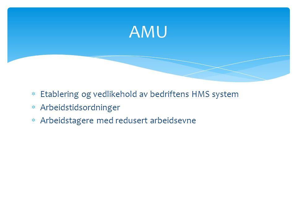  Etablering og vedlikehold av bedriftens HMS system  Arbeidstidsordninger  Arbeidstagere med redusert arbeidsevne AMU