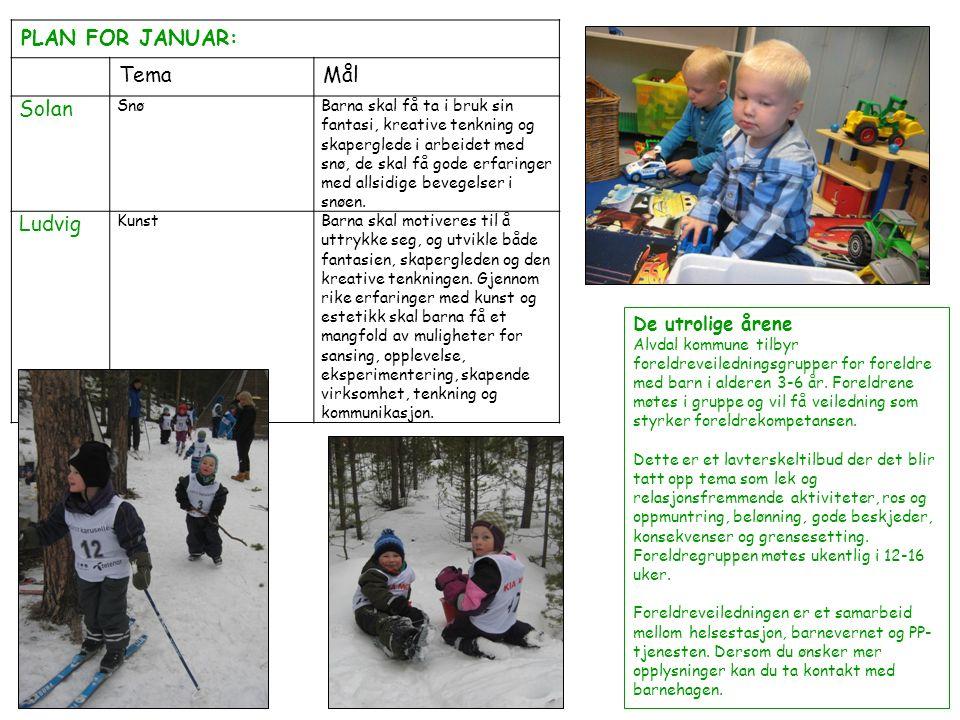 PLAN FOR JANUAR: TemaMål Solan SnøBarna skal få ta i bruk sin fantasi, kreative tenkning og skaperglede i arbeidet med snø, de skal få gode erfaringer