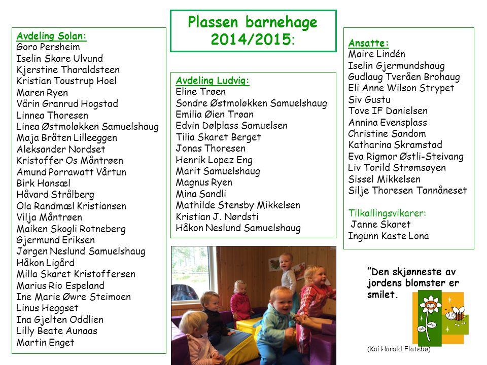 Alvdal barnehage (Plassen og Øwretun barnehager) har ett felles samarbeidsutvalg, med to foreldrerepresentanter (+ vara) fra hver barnehage, samt én ansatt i tillegg til styrer fra hver barnehage.
