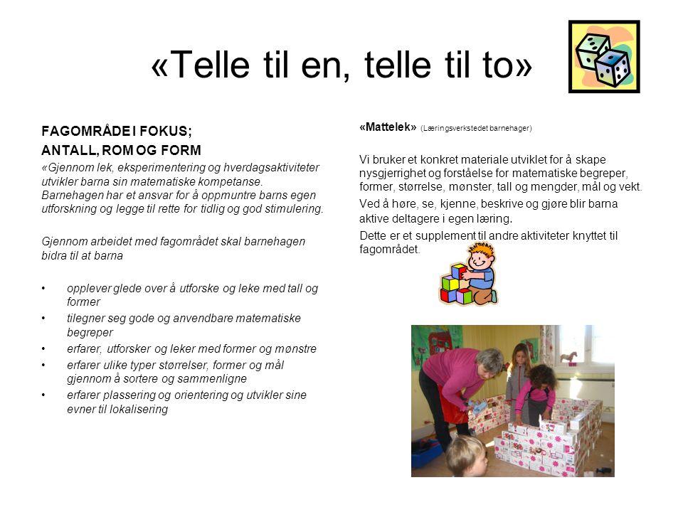 «Telle til en, telle til to» FAGOMRÅDE I FOKUS; ANTALL, ROM OG FORM «Gjennom lek, eksperimentering og hverdagsaktiviteter utvikler barna sin matematis