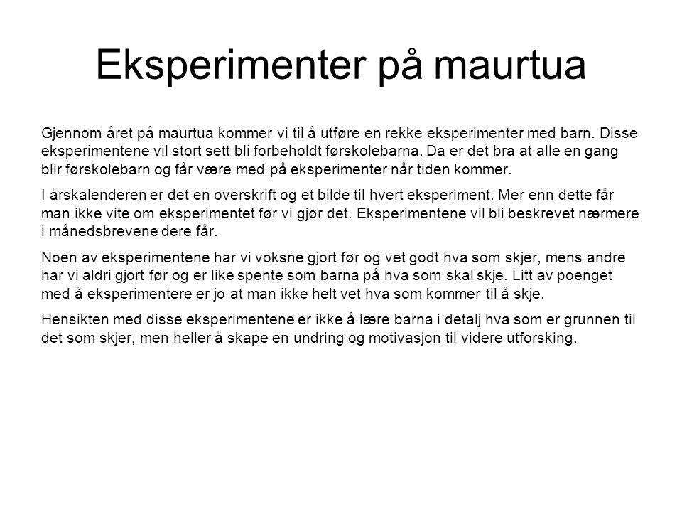 Eksperimenter på maurtua Gjennom året på maurtua kommer vi til å utføre en rekke eksperimenter med barn. Disse eksperimentene vil stort sett bli forbe