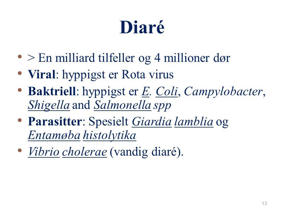 Akutt luftveisinfeksjon (ARIs) 2 millioner under 5år dør hvert år Viral: RSV, measles, parainfluenza (PIV-1,2,3) Baktriell: Streptococcus pneumoniae 1/3, Hib Risiko faktorer: ↓alder 0 – 2 mnd, ↓fødselsvekt, underernæring, lite amming, overcrowding.