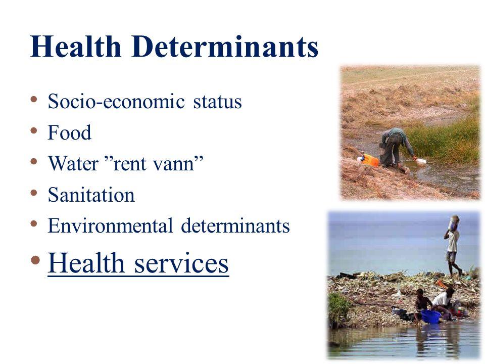 Oversikt Health Determinants HelsestasjonVaksinasjon Health Indicators Basisindikatorer på barnehelse Sykdommer & Dødelighet