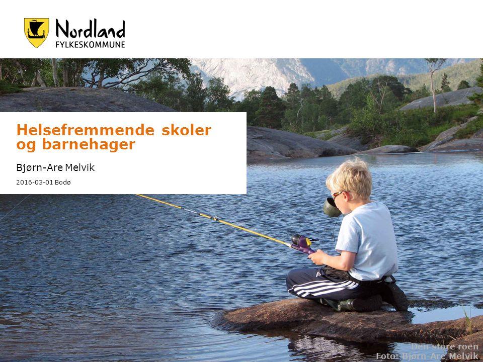 Helsefremmende skoler og barnehager Bjørn-Are Melvik 2016-03-01 Bodø Den store roen Foto: Bjørn-Are Melvik