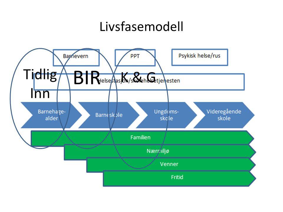 Livsfasemodell Tidlig Inn BIR K & G